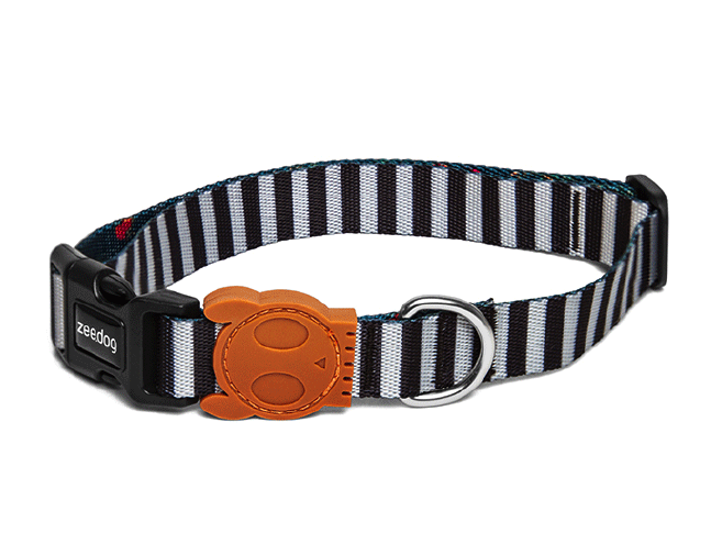 10% OFF ⏰ ZEE.DOG<br>Mango Dog Collar