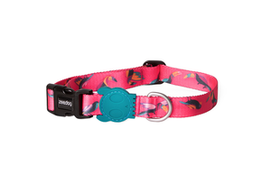 10% OFF ⏰ ZEE.DOG<br>Paradise Dog Collar