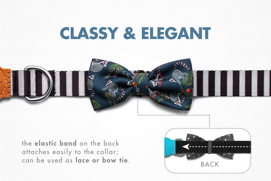 10% OFF ⏰ ZEE.DOG<br>Mango Bow Tie