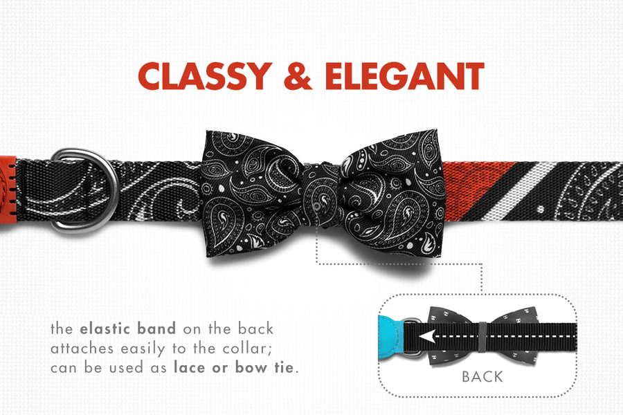 10% OFF ⏰ ZEE.DOG<br>Paisley Bow Tie