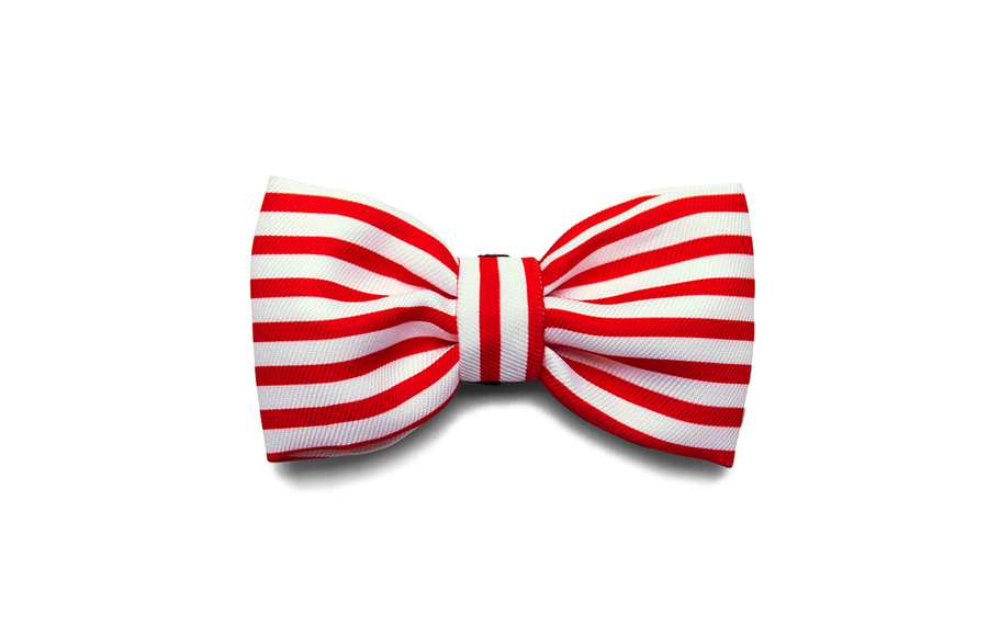 10% OFF ⏰ ZEE.DOG<br>Cadillac Bow Tie