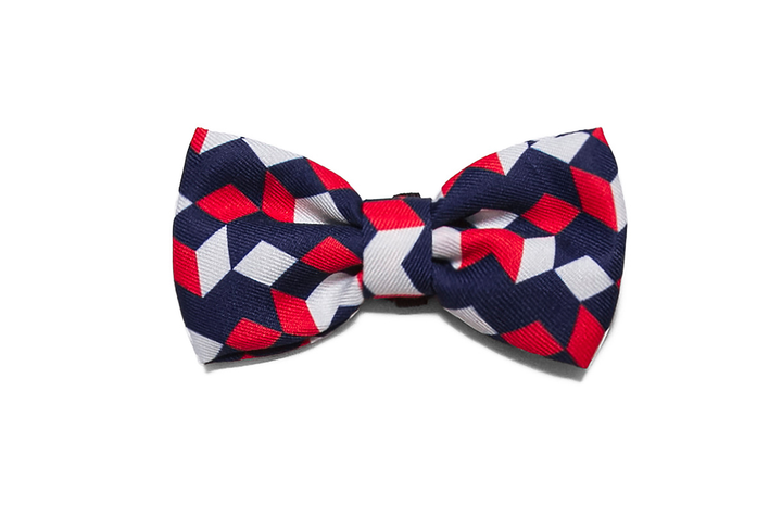 10% OFF ⏰ ZEE.DOG<br>Mr Scooter Bow Tie