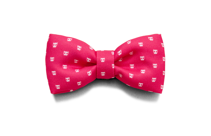 10% OFF ⏰ ZEE.DOG<br>Pink Skull Bow Tie