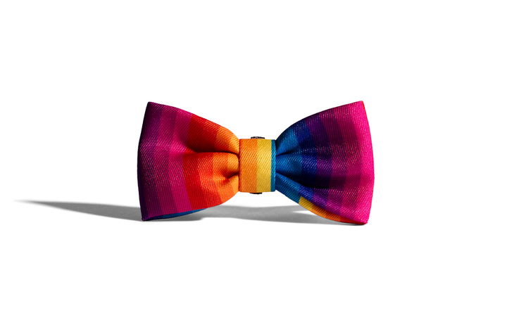 10% OFF ⏰ ZEE.DOG<br>Prisma Bow Tie