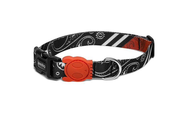 10% OFF ⏰ ZEE.DOG<br>Paisley Dog Collar
