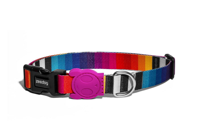 10% OFF ⏰ ZEE.DOG<br>Prisma Dog Collar