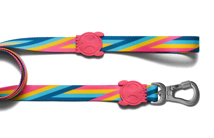 10% OFF ⏰ ZEE.DOG<br>Bowie Dog Leash
