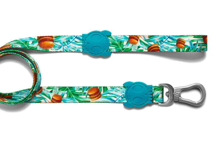 10% OFF ⏰ ZEE.DOG<br>McZee Dog Leash