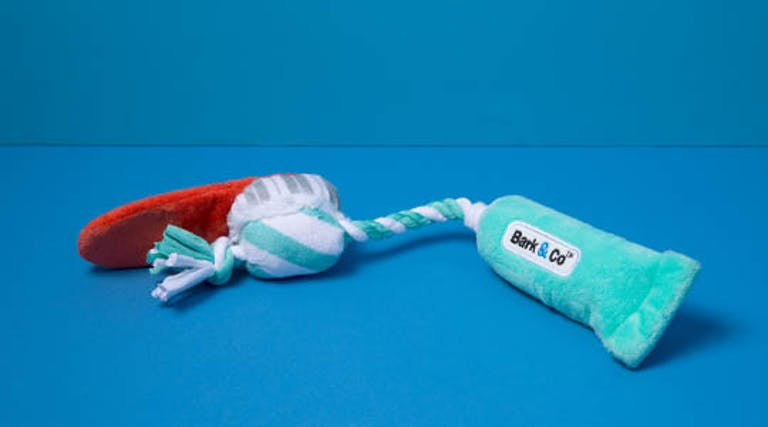 BARK<br>Play Twice A Day Toothpaste<br>Dog Plush Toy