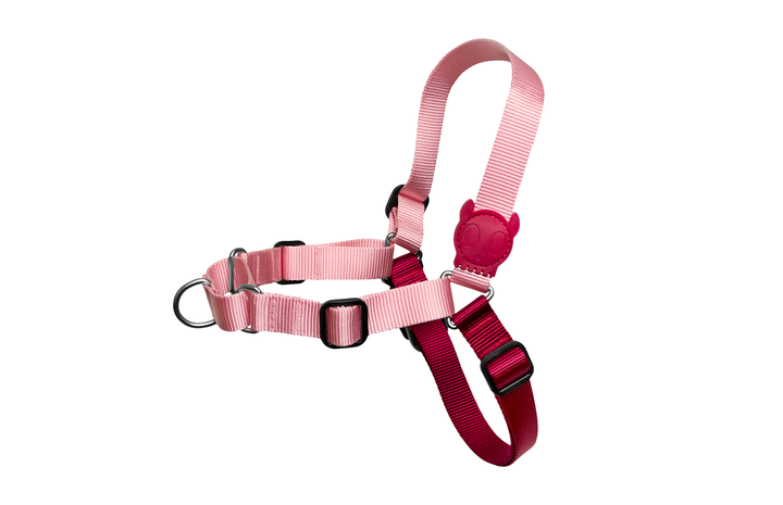 10% OFF ⏰ ZEE.DOG<br>Blink Soft-Walk Dog Harness