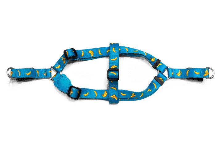 10% OFF ⏰ ZEE.DOG<br>Banana Shake Step-In Dog Harness
