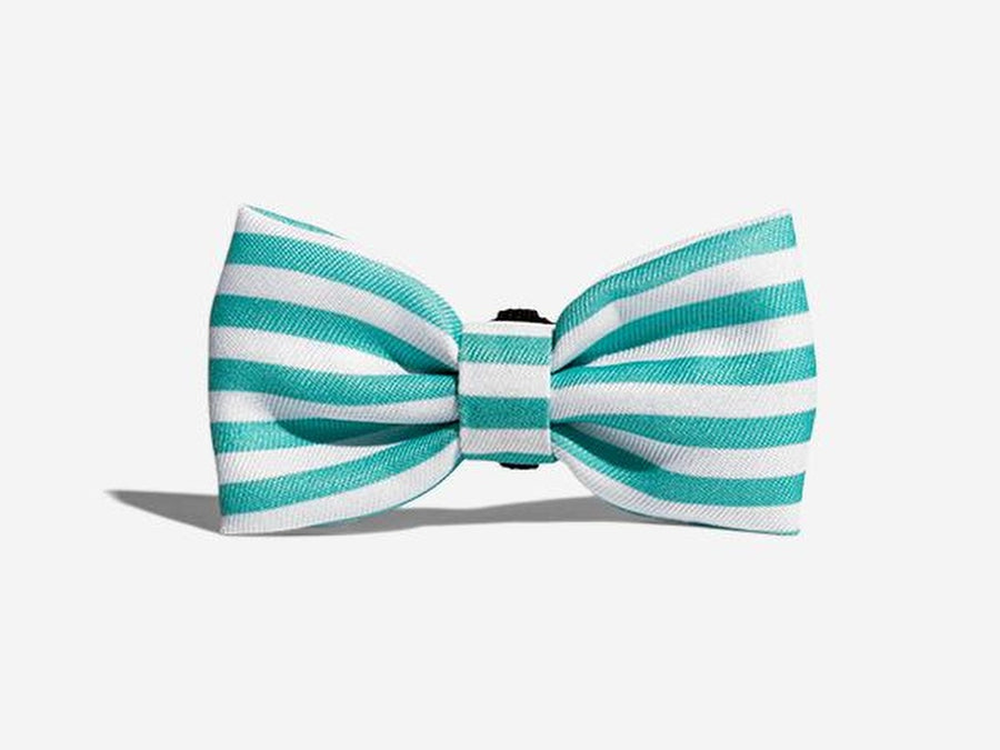10% OFF ⏰ ZEE.DOG<br>Florida Bow Tie