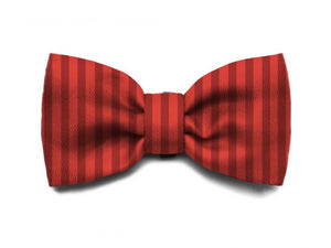 10% OFF ⏰ ZEE.DOG<br>Fuji Bow Tie
