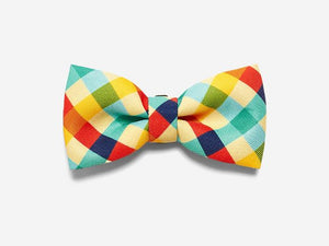 10% OFF ⏰ ZEE.DOG<br>Phantom Bow Tie