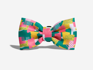 10% OFF ⏰ ZEE.DOG<br>Salina Bow Tie