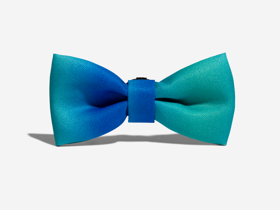 10% OFF ⏰ ZEE.DOG<br>Tide Bow Tie