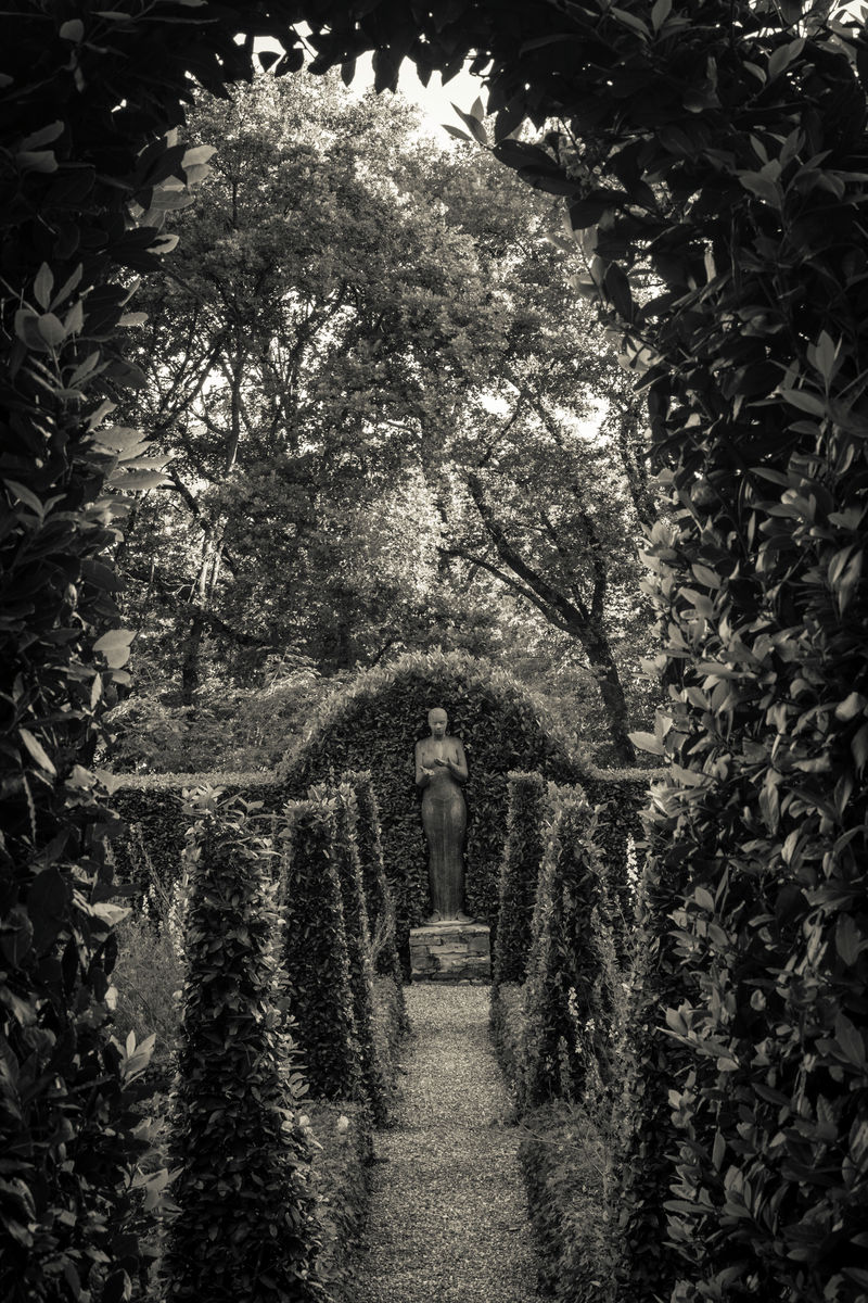 Formal garden with topiary