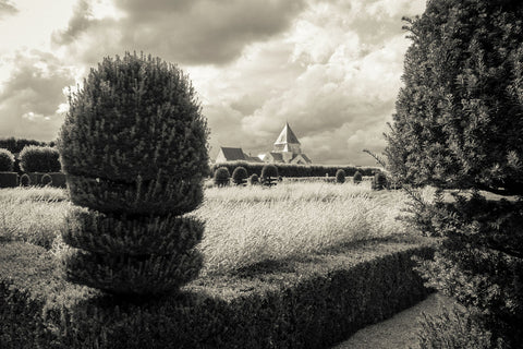 Clipped Yew, Villandry