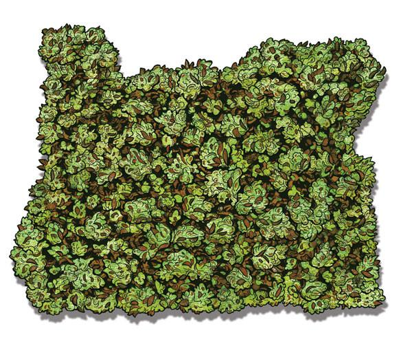 Oregon Buds Sticker - Pacific Northfresh  - 2