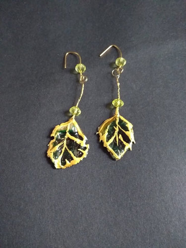Betula Ear Rings