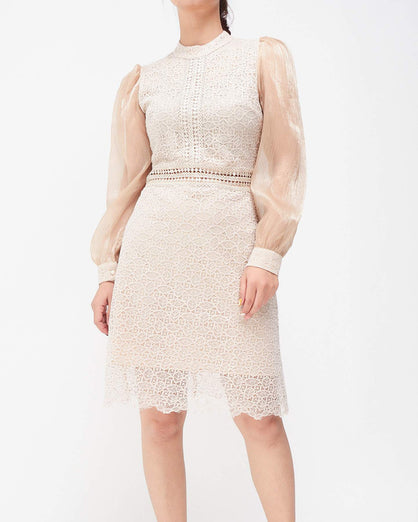 Bodycon Lady Lace Dress | moioutfit.com
