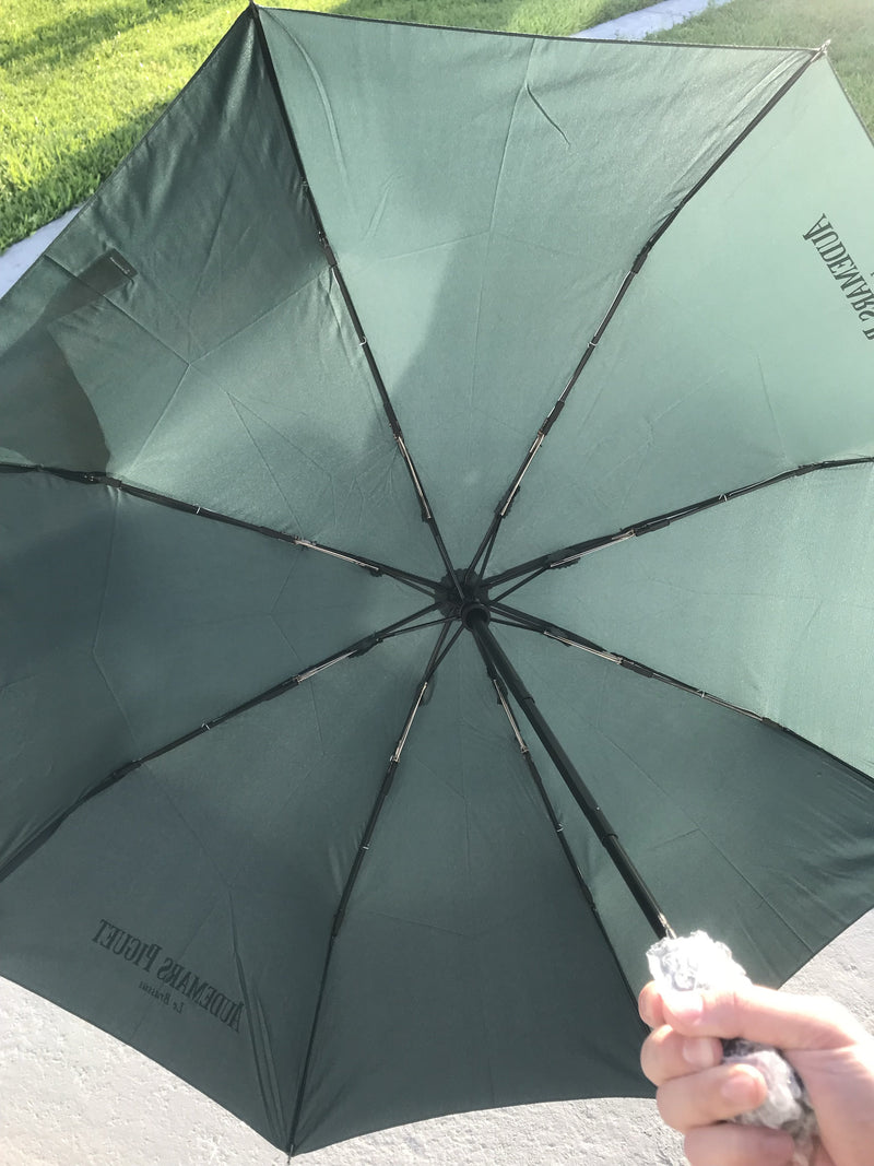 Audemars Piguet Umbrella Green Rain Inside Picture