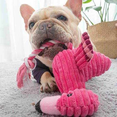 Stuffed Flamingo Dog Toy-Playing-Alfy & Co-Alfy & Co