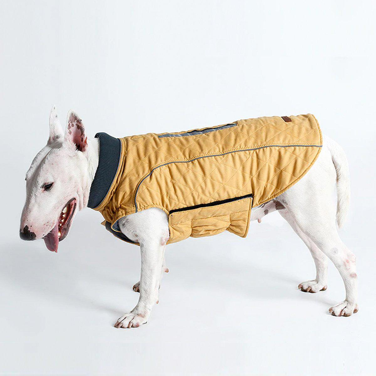 Warm dog jacket-Outdoor-Alfy & Co-Alfy & Co