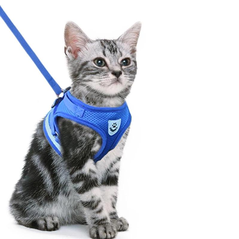 Adjustable cat harness-Outdoor-Alfy & Co-Alfy & Co