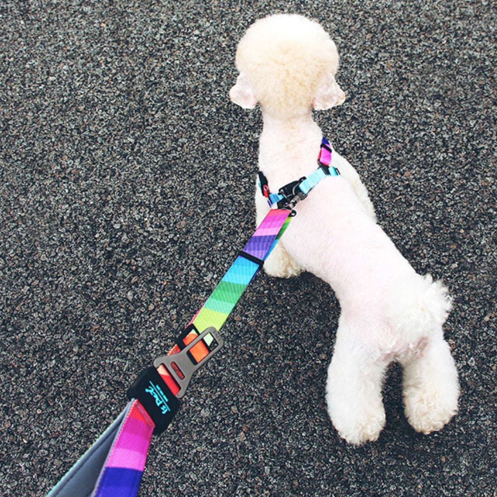 Striped dog leash-Outdoor-Alfy & Co-Alfy & Co