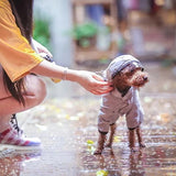 Gray dog raincoat-Outdoor-Alfy & Co-Alfy & Co
