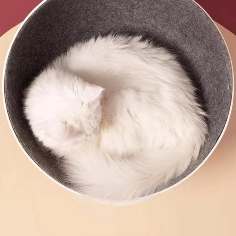 Rotating cat chair-Sleeping-Alfy & Co-Alfy & Co