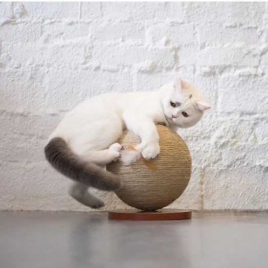 Rotating Globe Cat Scratch Post-Playing-Alfy & Co-Alfy & Co