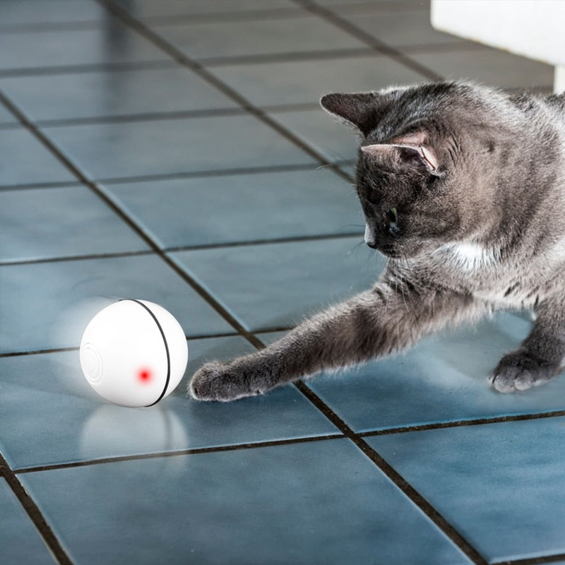 Smart interactive cat toy rotating ball-Playing-Alfy & Co-Alfy & Co