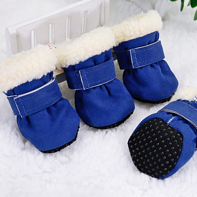 Stylish winter dog boots-Outdoor-Alfy & Co-Blue-L-Alfy & Co