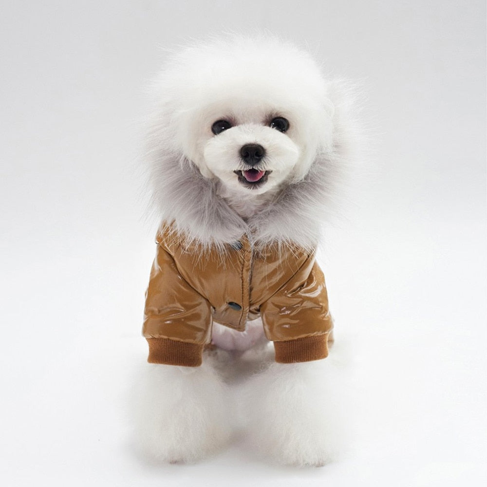 Hooded dog coat-Outdoor-Alfy & Co-Alfy & Co