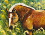 Chestnut Foal Acrylic Painting