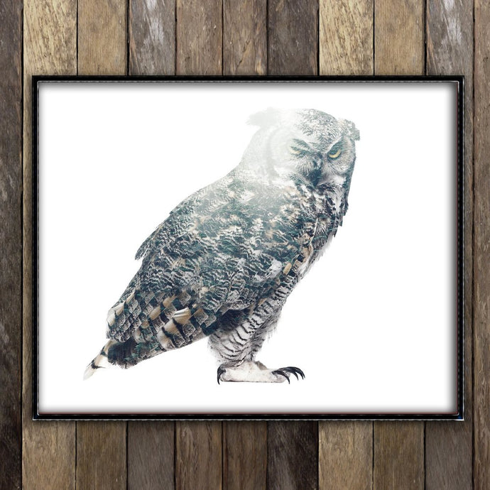 Forest Owl Print