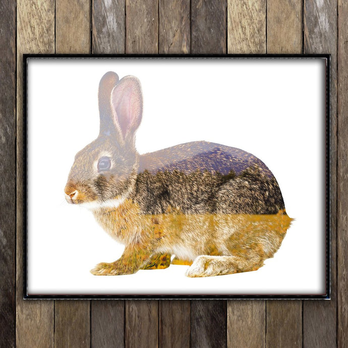 Meadow Rabbit Print