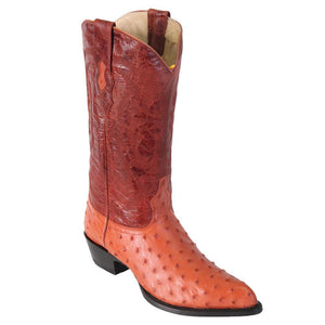 Ostrich-J-toe-cowboy-boot-Los-altos-cogn