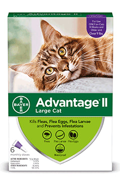 Advantage II Advantage II Flea Treatsment for Large Cat 6 Dose
