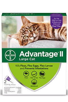 Advantage II Advantage II Flea Treatsment for Large Cat 2 Dose