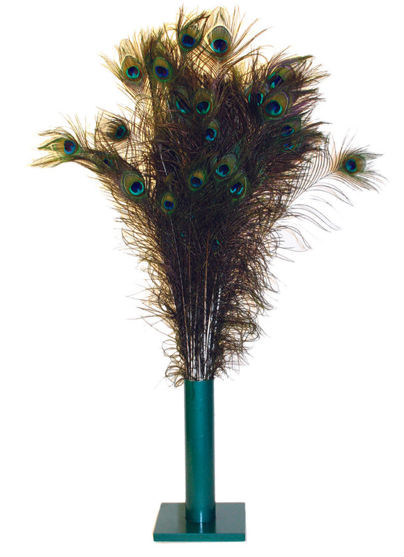 Vee Enterprises Natural Peacock Feather Cat Toys 100 Count