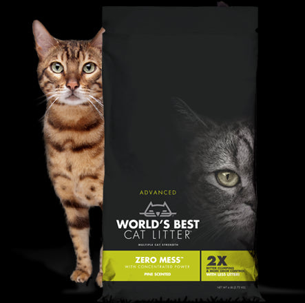 World's Best Cat Litter Advanced Zero Mess Pine Scented Cat Litter 6 Lbs