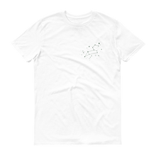 Load image into Gallery viewer, Goodful Leo Zodiac T-Shirt