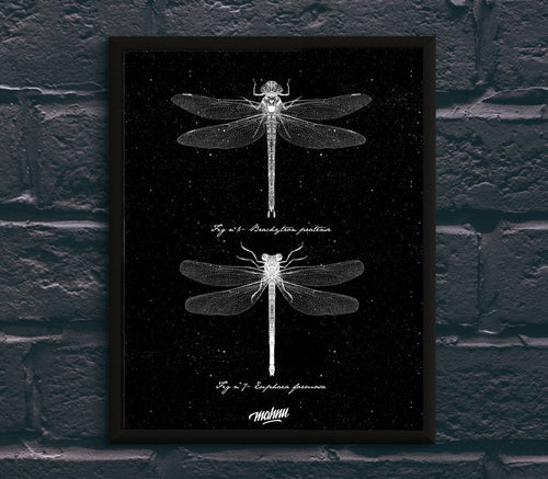 NEGATIVE DRAGONFLY - Mahnu