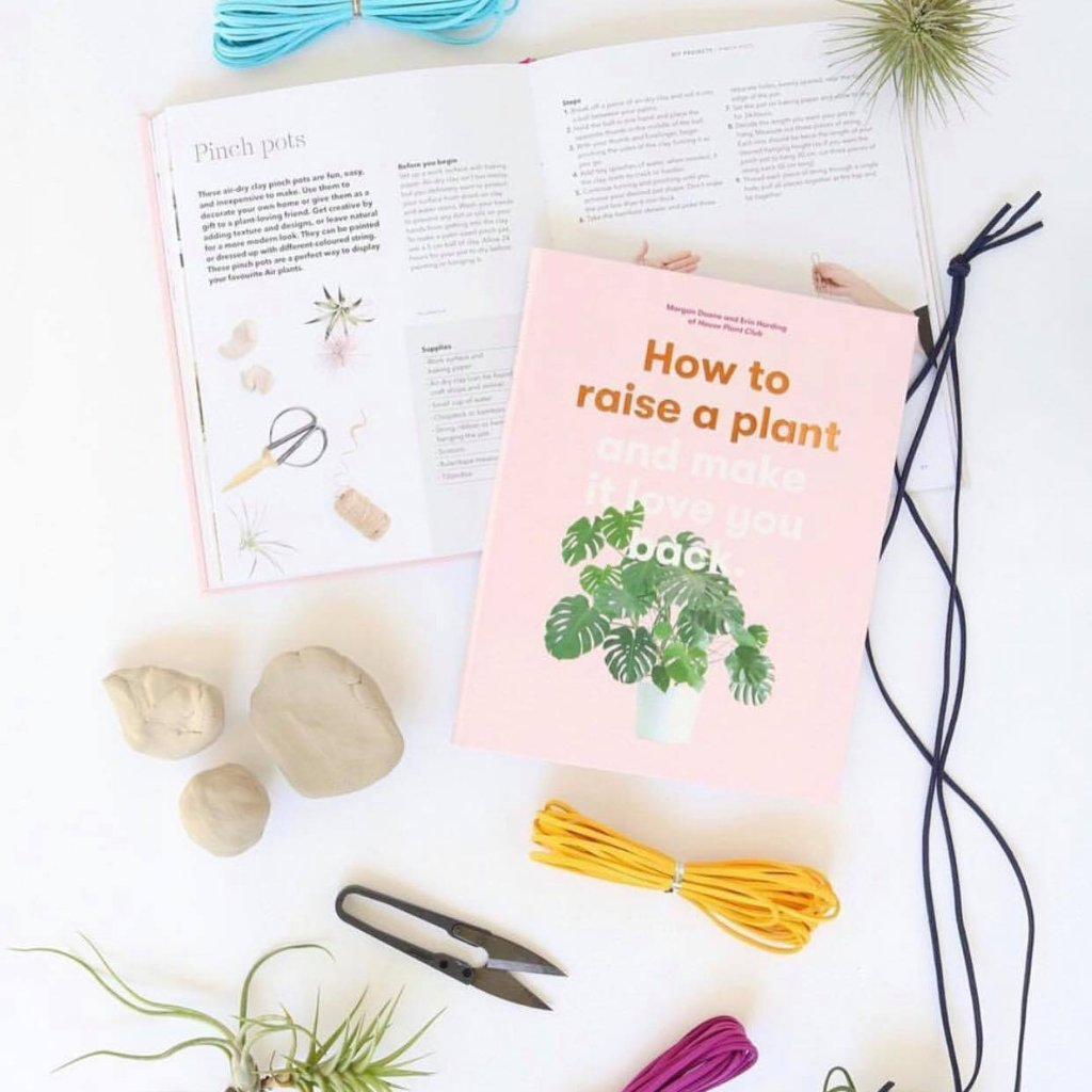 How to raise a plant - Book - Lustre Blooms fresh flowers Geelong