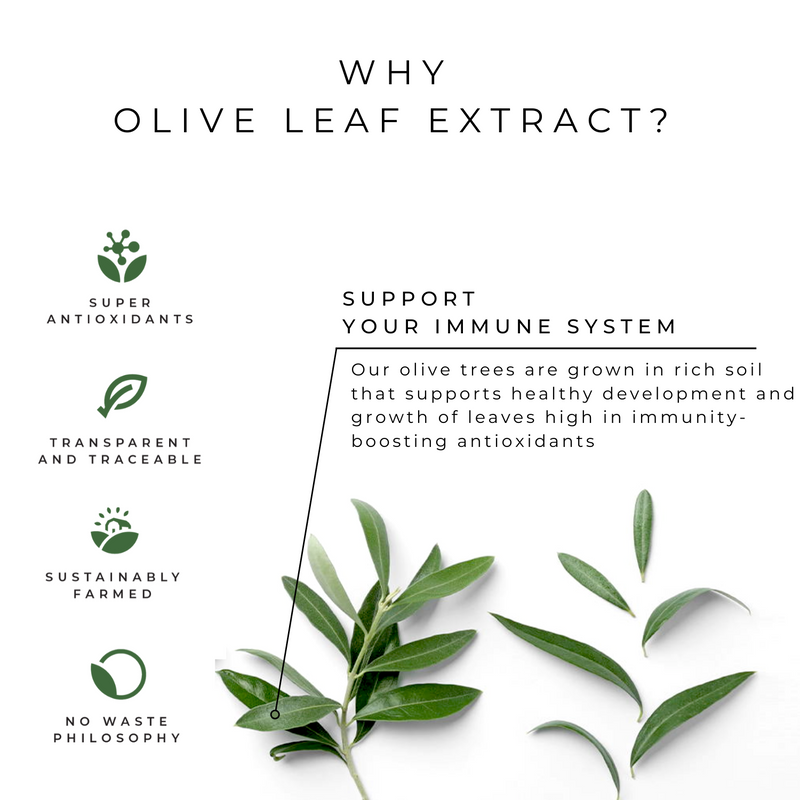 Super Immunity Olive Leaf Extract
