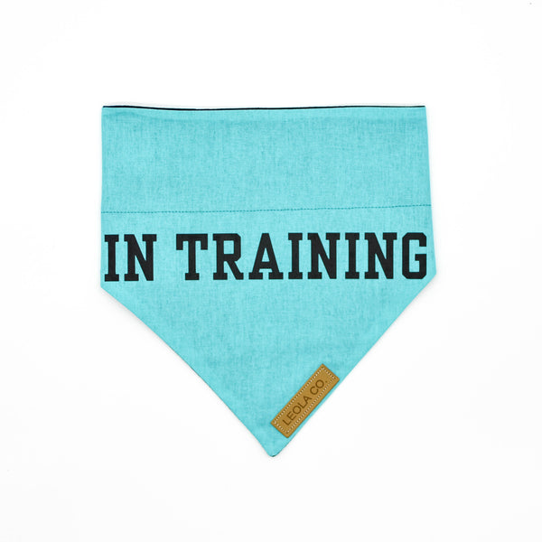 In Training - Awareness Bandana