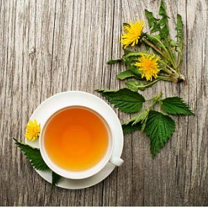 Dandelion Root Tea Organic | Natural Source of Vitamins | Minerals and Antioxidants | Go Nutra